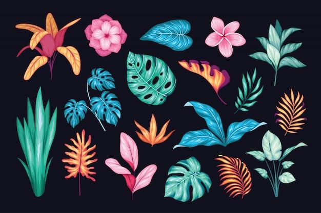 Bella collezione floreale disegnata a mano vintage