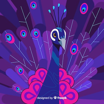 Bella composizione di pavone