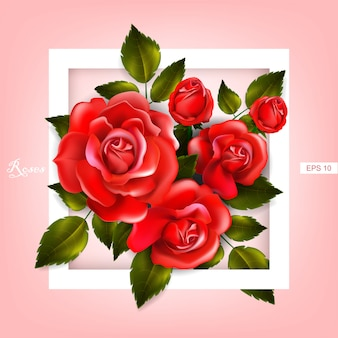 Bella cornice con rose rosse e foglie. composizione floreale