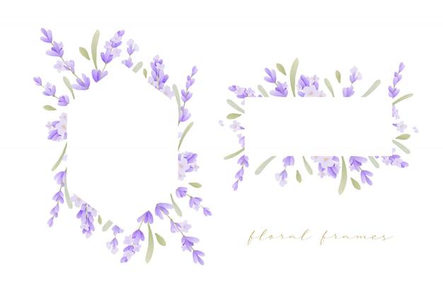 Bella cornice floreale con acquerello di fiori di lavanda