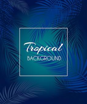 Bella foglia di palma sfondo tropicale