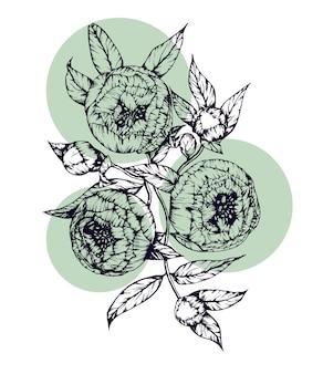 Bella illustrazione con fiori