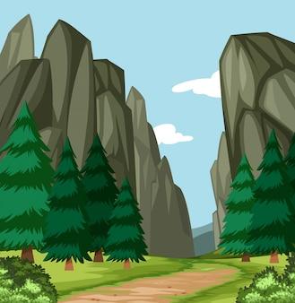Bella scena del canyon di legno