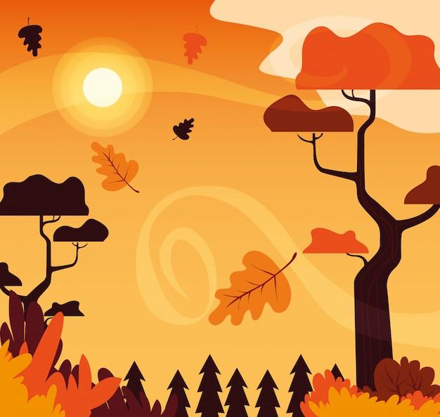 Bella scena del paesaggio di autunno con gli alberi