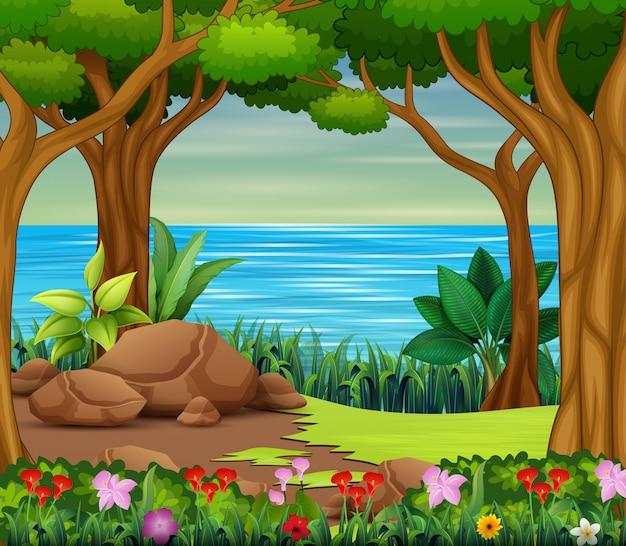 Bella scena della foresta con fiume e alberi
