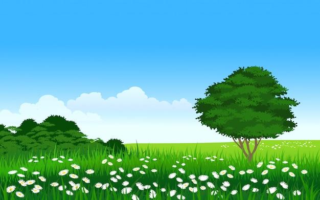 Bella terra erbosa vuota con albero e fiori
