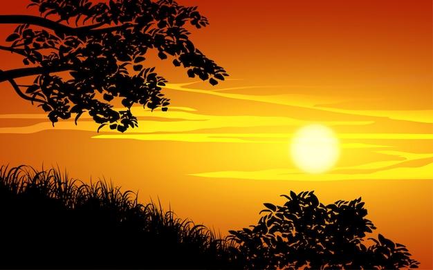 Bella vista del tramonto con rami e silhouette di erba