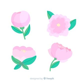 Bellissima collezione di fiori di peonia