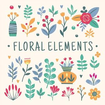 Bellissimi elementi floreali
