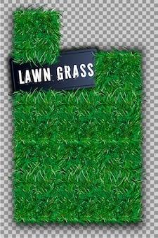 Bellissimo campo erboso verde