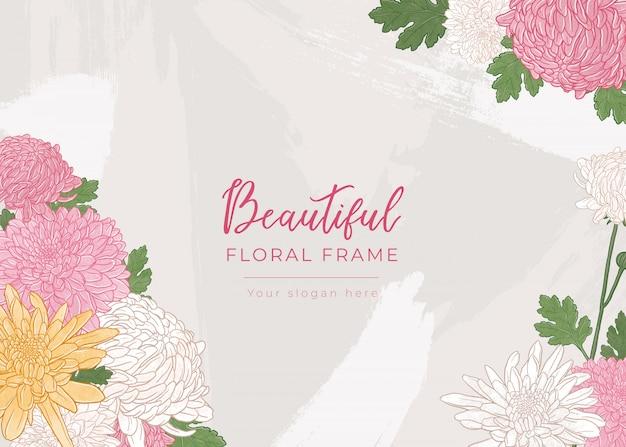 Bellissimo sfondo floreale con crisantemi