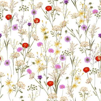 Bello di molti tipi di fiori di prato fioriti estivi e piante botaniche senza cuciture nel disegno vettoriale, per moda, tessuto, web, avvolgimento e tutte le stampe