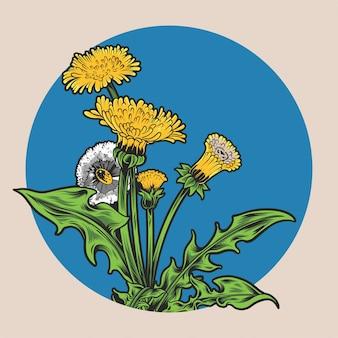Bello disegno dell'illustrazione del fiore del dente di leone