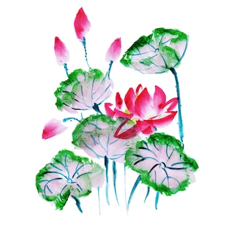 Bello elemento floreale dell'acquerello