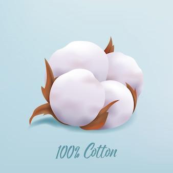 Bello fiore realistico della pianta di cotone isolato su fondo blu