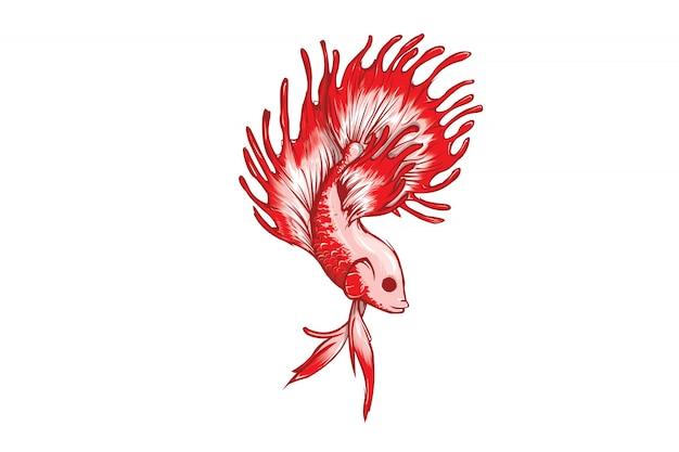 Betta pesce isolato