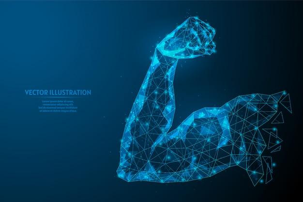 Bicipite muscolare del braccio forte. corpo sano. il concetto di sport, affari, start-up, corretta alimentazione. tecnologia innovativa. illustrazione di modello poli wireframe basso 3d.