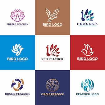 Bird, collezione di design logo pavone.