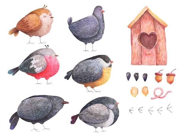 Birdhouse stabilito dell'acquerello dei semi di piccione del passero del corvo del ciuffolotto degli uccelli su un fondo bianco
