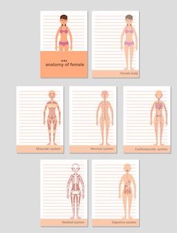 Blocco note per record in formato a6. anatomia del corpo femminile