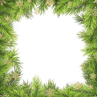 Blocco per grafici di natale con le filiali e l'ombra del pino isolate su bianco.