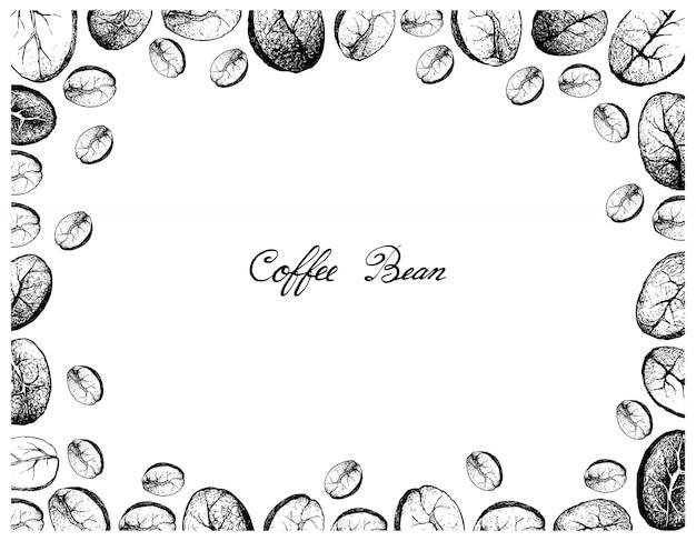 Blocco per grafici disegnato a mano dei chicchi di caffè su priorità bassa bianca