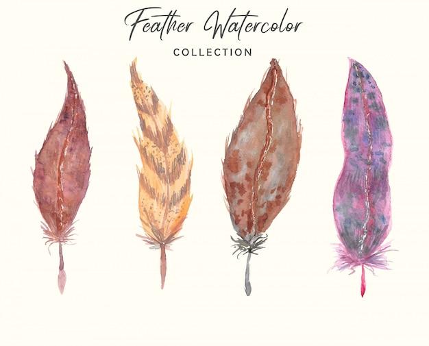 Boho bella collezione di acquerelli di piume