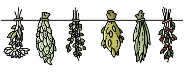 Boho di erbe di strega che appende la decorazione in stile piatto