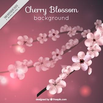Bokeh realistica di fiori di ciliegio