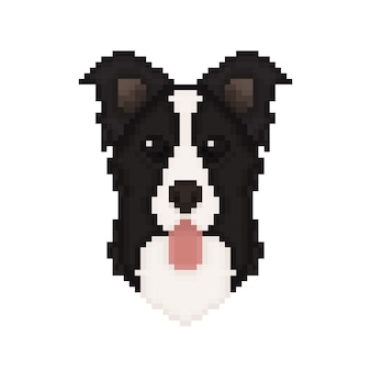 Border collie testa di cane in stile pixel art.