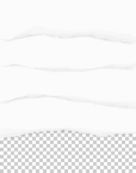 Bordi della carta strappati per lo sfondo.