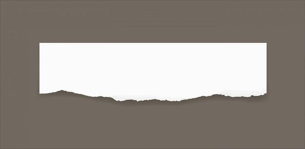 Bordi di carta strappata per lo sfondo. strappato la trama di sfondo della carta.