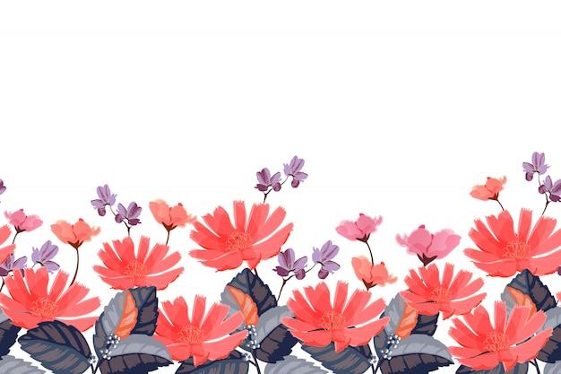 Bordo floreale. fiori estivi rossi, rosa, viola isolati