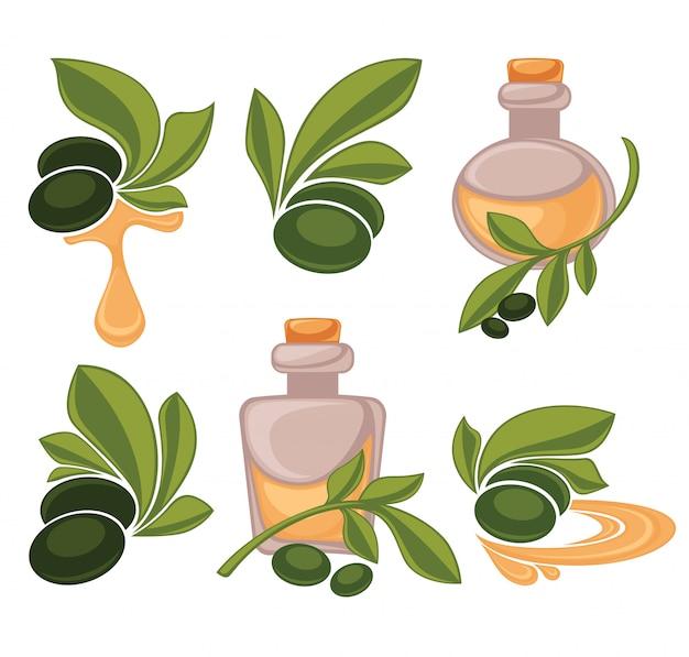 Bottiglia di olio e oliva verde,