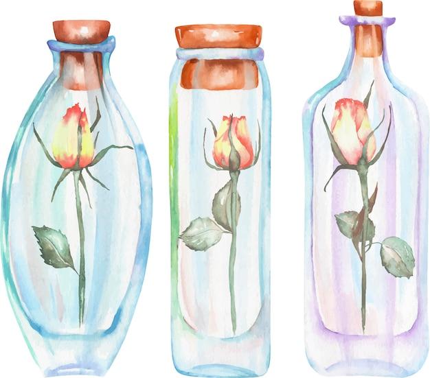Bottiglie dell'acquerello dell'illustrazione con le rose dentro