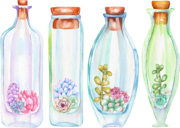 Bottiglie di acquerello con succulente e cetrioli all'interno