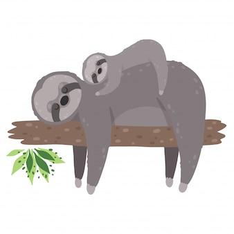Bradipo sveglio che dorme con il bambino isolato su fondo bianco. la pigrizia della madre con suo figlio.