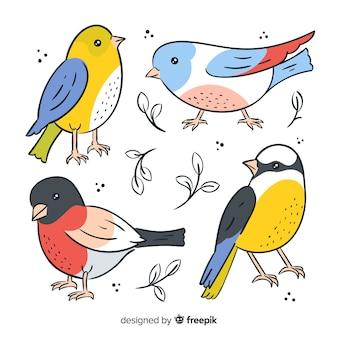 Branco di uccelli disegnati a mano