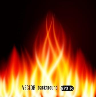 Brucia il fuoco di fiamma sullo sfondo