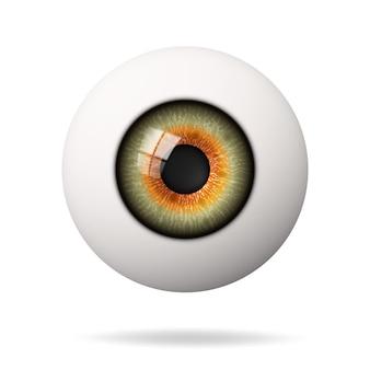 Bulbo oculare umano realistico. la retina è in primo piano.
