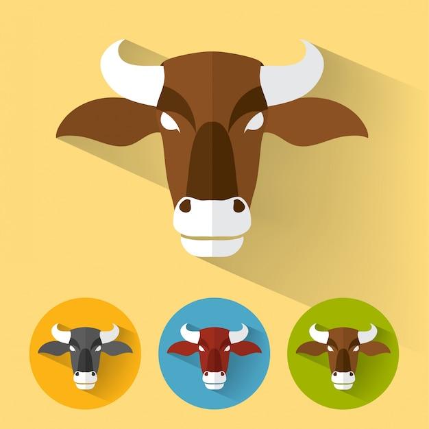 Bull ritratto piatto