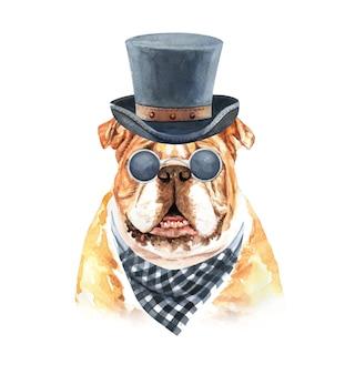 Bulldog dell'acquerello con occhiali da sole plaid sciarpa e cappello a cilindro.