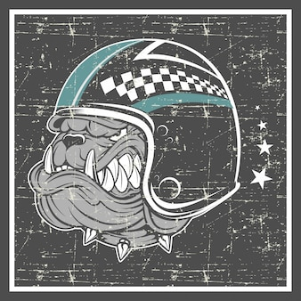 Bulldog stile grunge indossando il casco