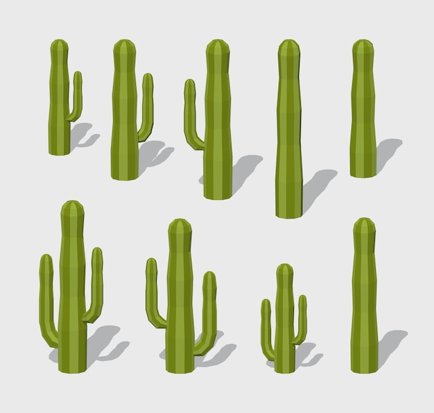 Cactus 3d lowpoly