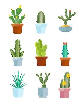 Cactus del fumetto, icone di vettore di piante del deserto