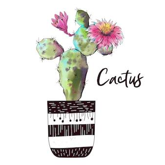 Cactus dell'acquerello isolato su sfondo bianco