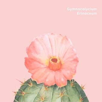 Cactus disegnato a mano del gymnocalycium erinaceum