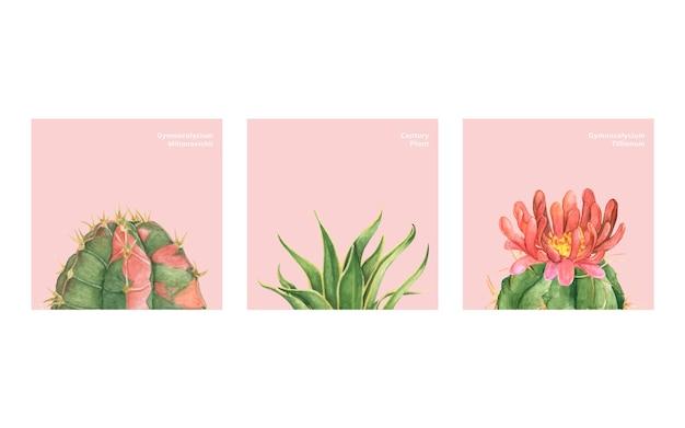 Cactus e succulente disegnati a mano
