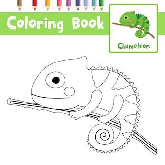 Camaleonte sul ramo da colorare