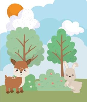 Campeggio carino coniglio e cervi pini erba sole nuvole cartoon